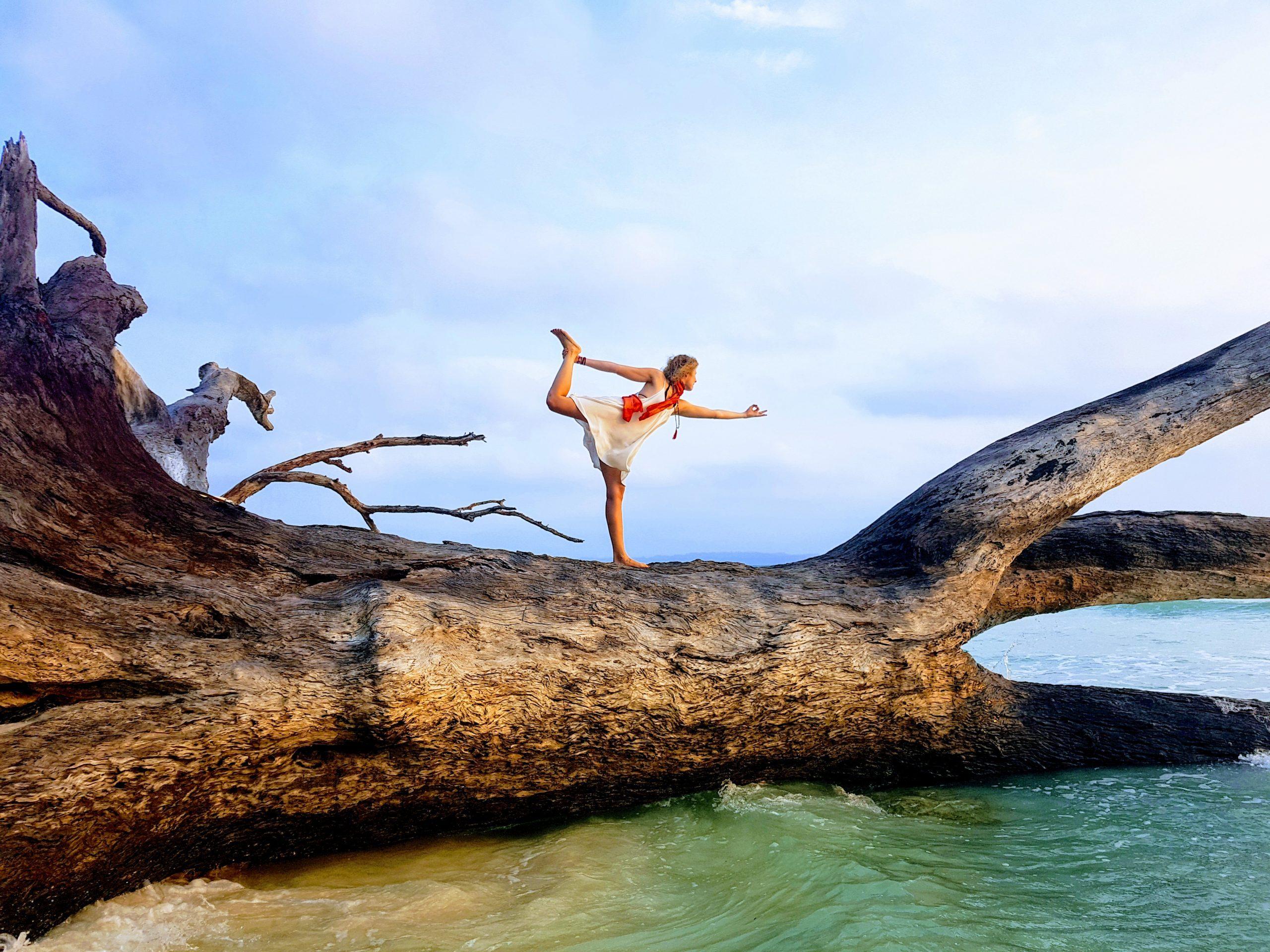 Tree Ocean Yoga Dancer Pose Beach Andaman Islands Havelock Island